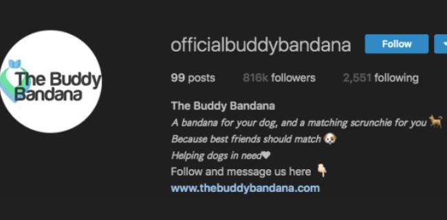 official instagram username